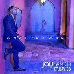 Jay Sean – What You Want Ft. Davido