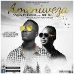 Donny Flavour Ft Mr Blue – Ameniweza