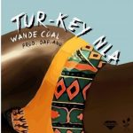 Wande Coal – Turkey Nla