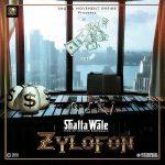 Shatta Wale – Zylofon