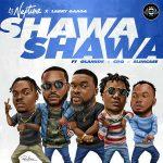DJ Neptune & Larry Gaaga – Shawa Shawa Ft. Olamide, CDQ & Slimcase
