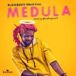 Rudebwoy Ranking – Medula