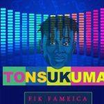 Fik Fameica – Tonsukuma
