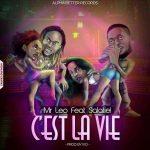 Mr Leo Ft Salatiel – C'est La Vie