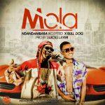 Ndandambara Ikospeed – Mola ft Bull Dogg