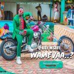 Q Boy Msafi – Wamevaa