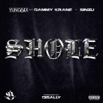 Yung6ix ft. Dammy Krane x Sinzu – Shole