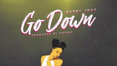 Barry Jhay - Go Down