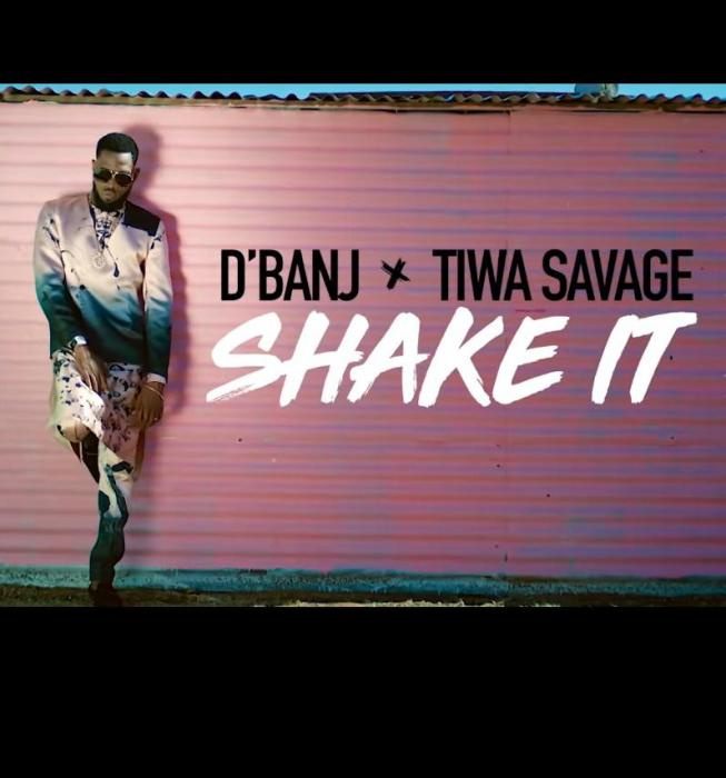 Shake It Video Cover