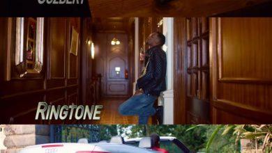 Goodluck Gozbert x Ringtone - Ipo Siku (Remix)