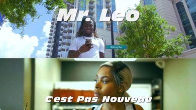 Mr Leo - C'est Pas Nouveau