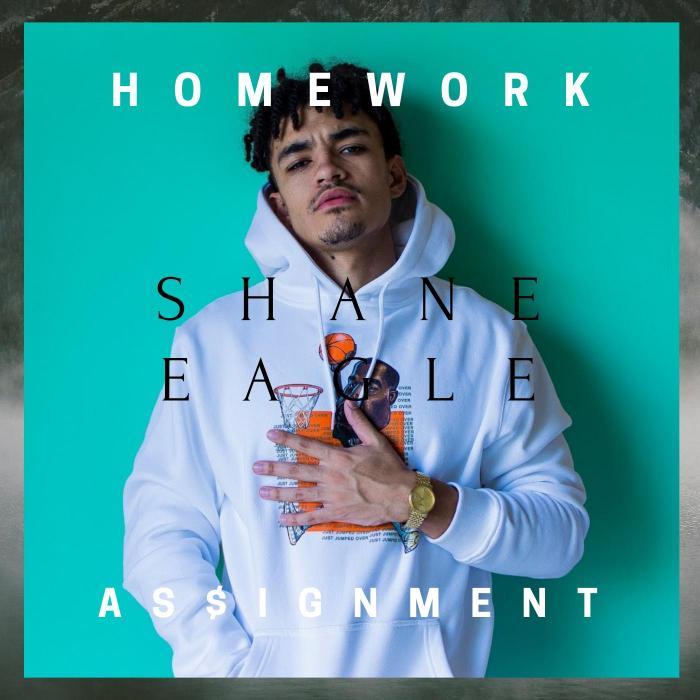 Shane Eagle – Homework As$Ignment