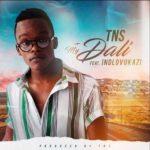 TNS – My Dali Ft. Indlovukazi