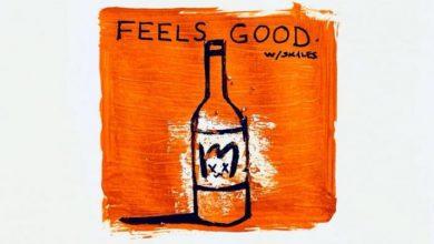 Plumpybeats - Feels Good Ft. Skales