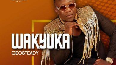 Geosteady - Wakyuka