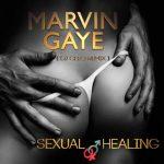 DJ Cleo – Sexual Healing (Amapiano Mix)